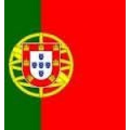 Bandeira de Portugal 30x45cm